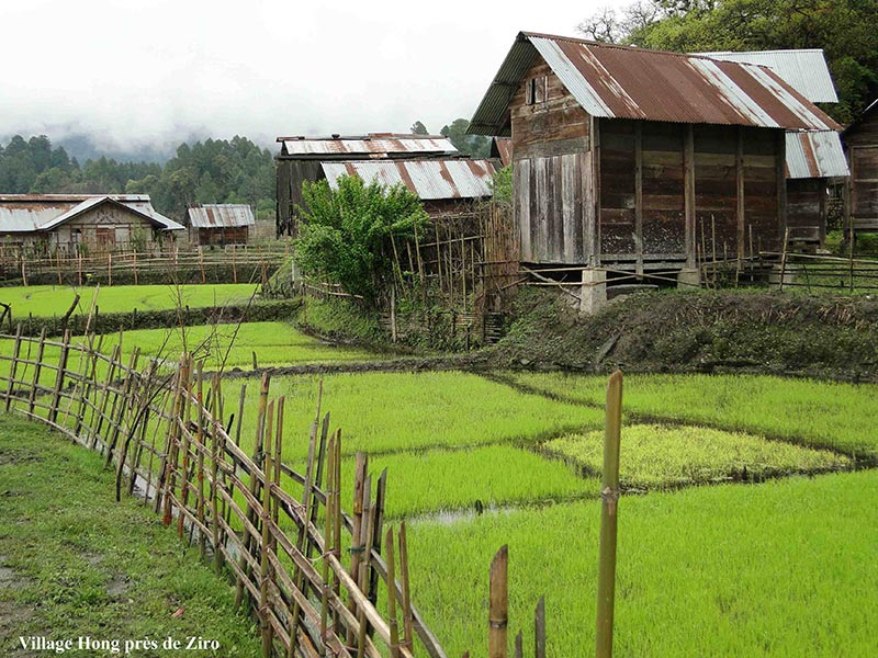grenier de riz