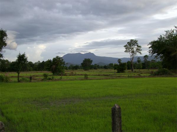 champs sukhothai